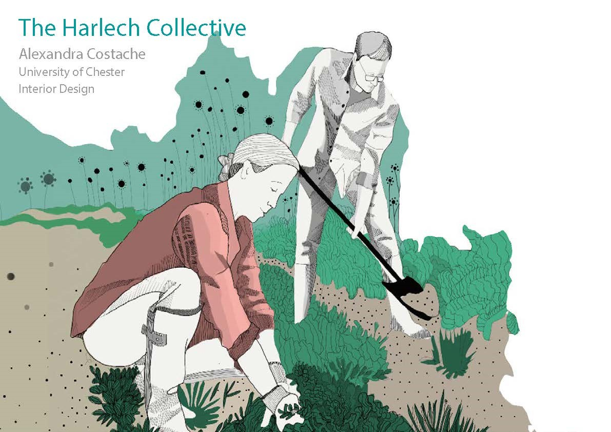Alexandra Costaches project The Harlech Collective
